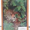 Хохлова С.М. (Леопард, вышивка крестиком).JPG